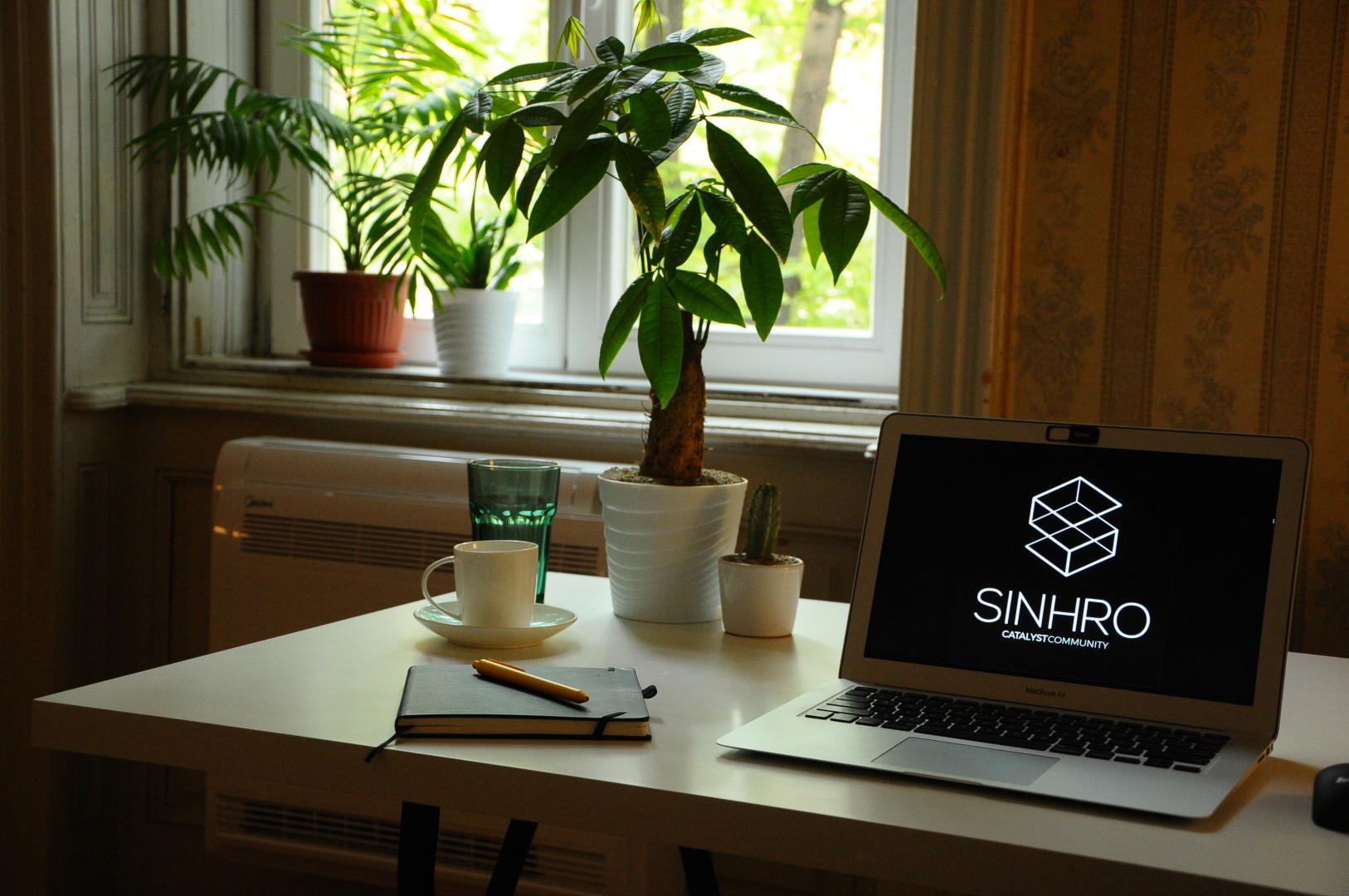 Sinhro hub