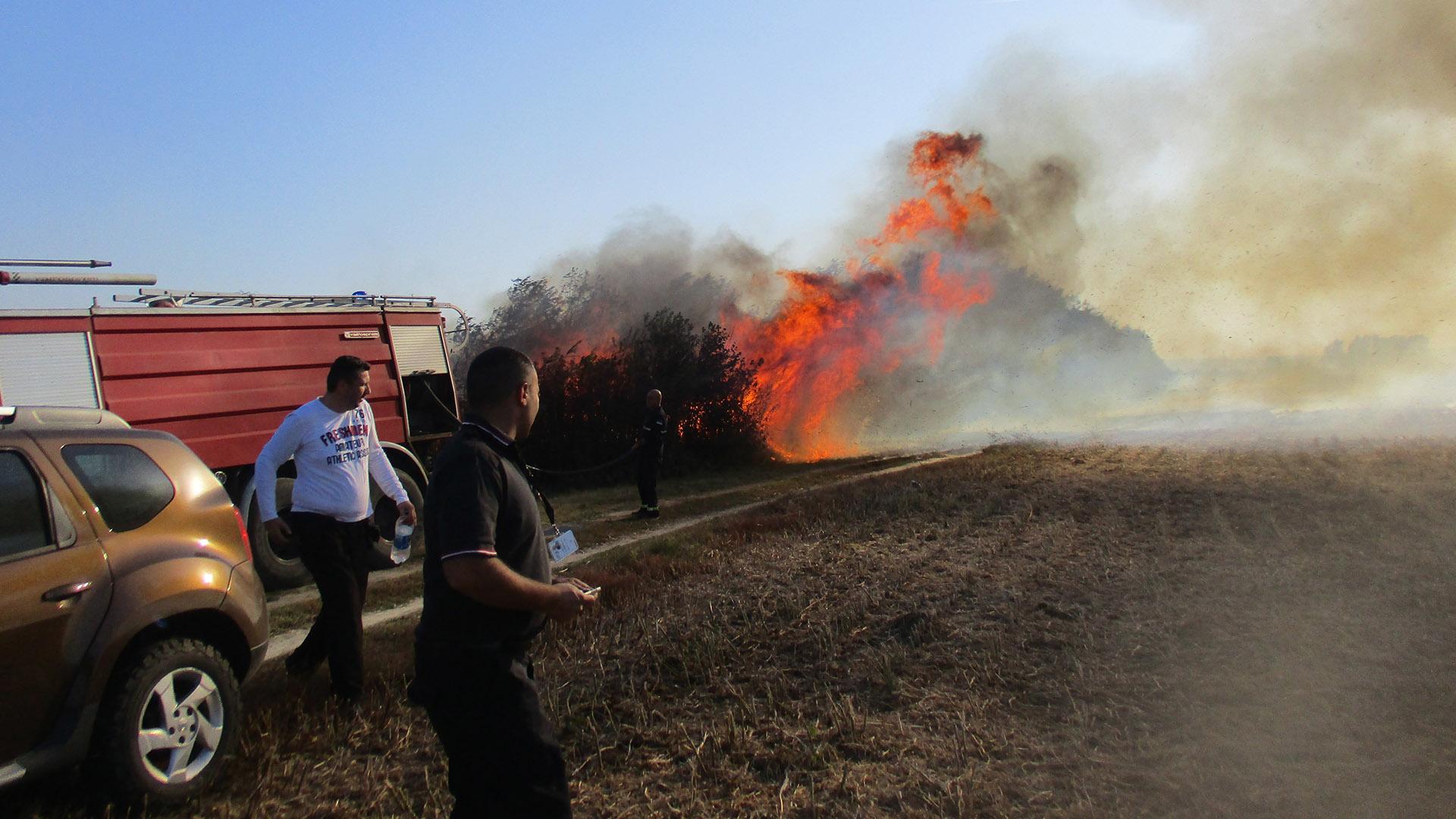 Požar u parku prirode Ponjavica