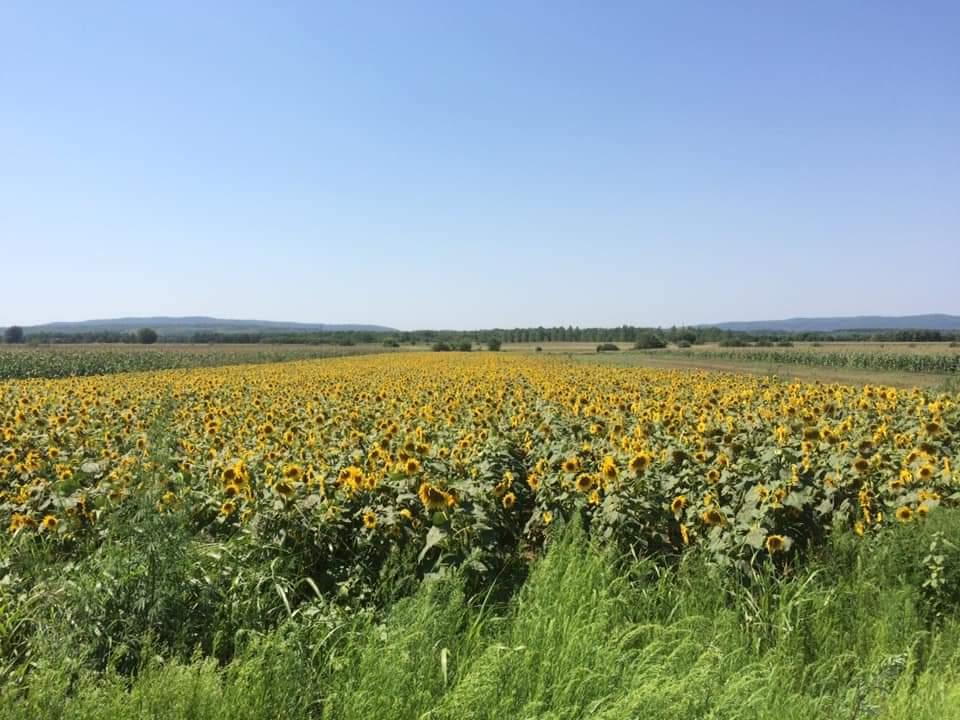 Putovanje Pančevo Niška Banja biciklom