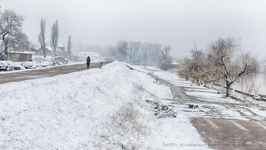 sneg 2021