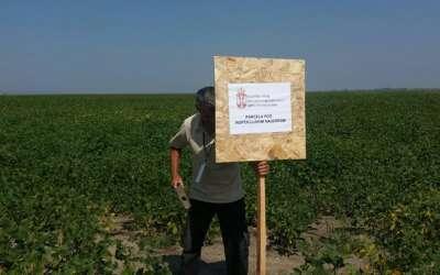 Postavljanje table na uzurpirano zemljište, Zoran Grba