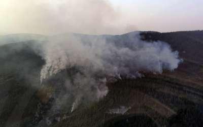 Zlatibor gori