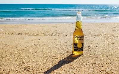 Pivo Korona