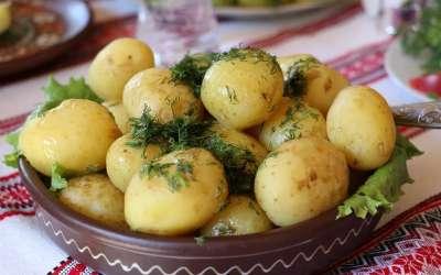 Mladi krompir