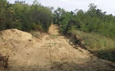 Deliblatska peščara Čardak
