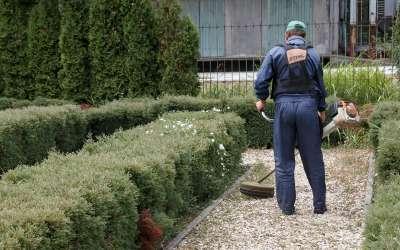 Zelenilo Pančevo košenje trave